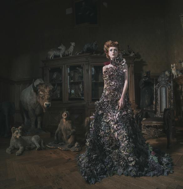 Miss Aniela French Fairytale