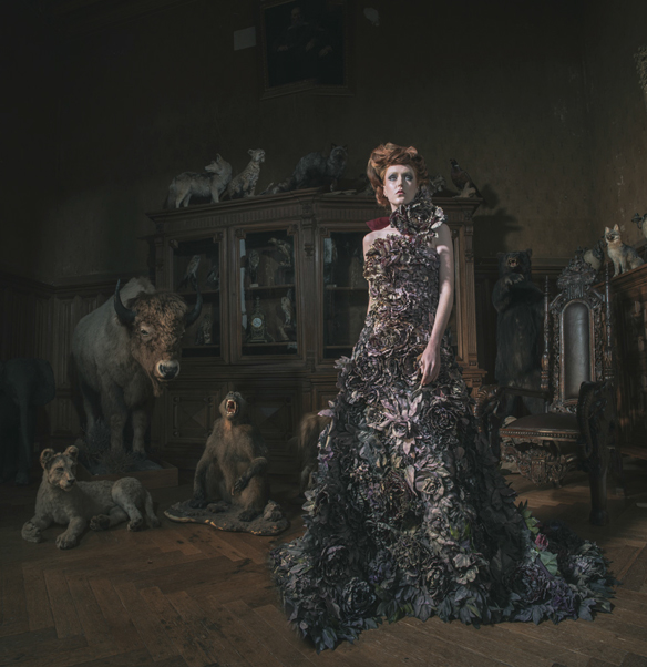 Miss Aniela French Fairytale
